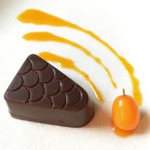 Dark chocolate with sea buckthorn ganache