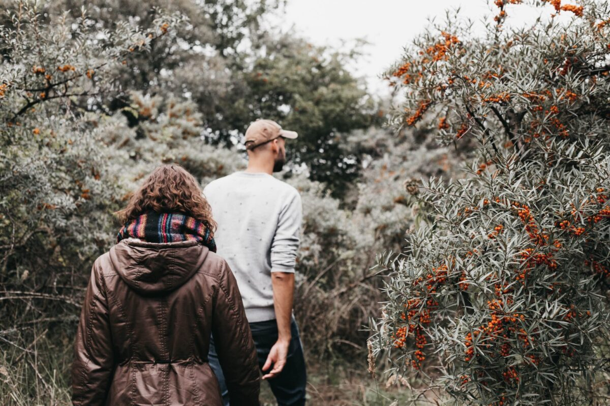 10 best U-pick sea buckthorn orchards in the eastern townships of Quebec